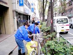 2010_11_clean_02.jpg