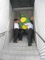 上下左右を確認しながらゆっくりと階段を下っていきます